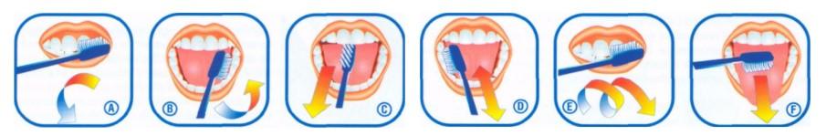 4istit zubi detjam 2